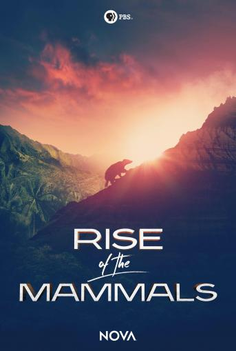 Rise of the Mammals Poster